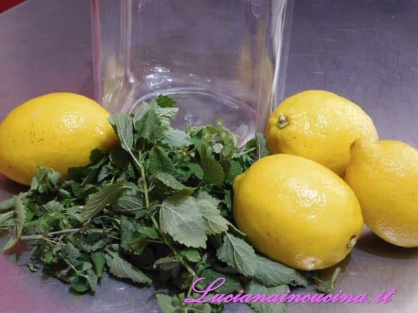 Preparare la melissa ed i limoni insieme ad un vaso di vetro piuttosto capiente.