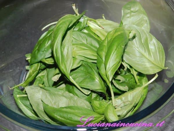 Pulire le foglie di basilico.
