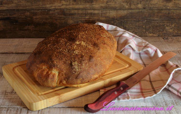 pane con farina di farro e khorasan